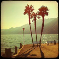 Davidag   Lago Maggiore