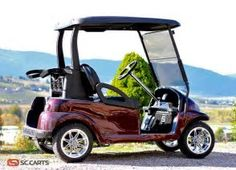 Image result for Images of Golf Carts