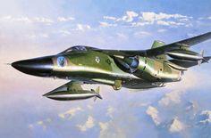 F-111D Aardvark (Shigeo Koike)