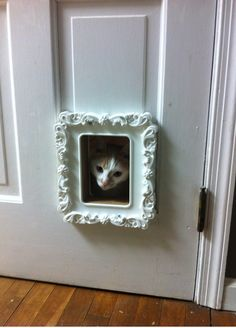 Replaced our ugly cat door with an Ikea picture frame only $5! The opening is a tight fit but as long as my cats don't get fatter we will be good.