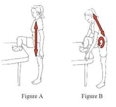 Stretches for hip flexor muscles