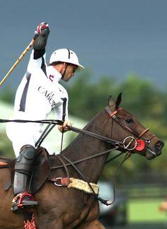Palm Beach #Polo Club #horses #horseback_riding