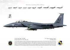 "UNITED STATES AIR FORCE - EUROPE 335th Fighter Squadron ""Chiefs"", 4th Fighter Wing Seymour Johnson Air Force Base, NC"