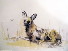 Painting of a wild dog in South Africa, with a butterfly