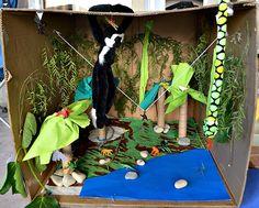 Make a rain forest in a box