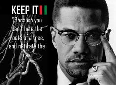 You Can't Hate the Roots Of A Tree, Malcolm X |Multimedia with Downloads http://rbgstreetscholar.wordpress.com/2014/06/22/you-cant-hate-the-roots-of-a-tree-malcolm-x-multimedia-with-downloads/