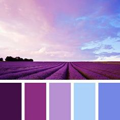 Color Palette inspires you to decorate your house, flat, bedroom, kitchen,. Purple Color Palettes, Blue Colour Palette, Colour Schemes, Color Combos, Pink Color, Bedroom Colour Palette, Design Palette, Bedroom Colors, Pantone