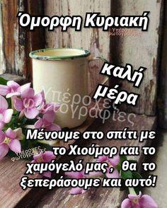 Good Morning, Sunday, Avon, Buen Dia, Domingo, Bonjour, Good Morning Wishes