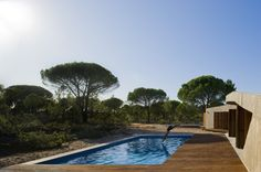 pool  Pictures - The Dune House - Architizer