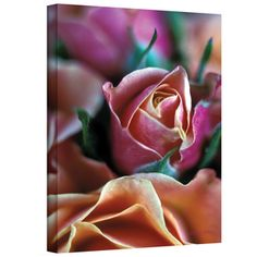 @Overstock.com - Artist: Kathy Yates Title: Mauve and Peach Roses  Product type: Wrapped Canvas http://www.overstock.com/Home-Garden/Kathy-Yates-Mauve-and-Peach-Roses-Canvas-Art/7588073/product.html?CID=214117 $46.99