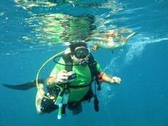 Scuba Dive or Snorkel Miami and Ft. Lauderdale, Where Once In a Lifetime Encounters with Marine Life Happen Daily.