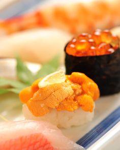sushi / sushi hyuga