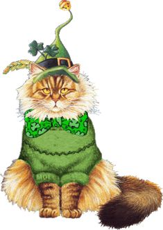 Irish St Pattys Day Sticker for iOS & Android Crazy Cat Lady, Crazy Cats, I Love Cats, Cute Cats, Pretty Cats, Image Chat, Happy St Patricks Day, Saint Patricks, Irish Blessing
