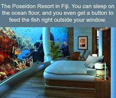 Interesting Places You'd Love to visit :-)   Poseidon Undersea Resorts , Fiji   For more travel Updates/Offers and Interesting Stuffs be connected to  Travel Universally