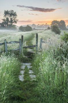 Stunning vibrant Summer sunrise over English countryside landscape