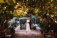 A wedding day @larchfield_estate isn't complete without a cuddle under the twinkling lights of the glasshouse! Another top wedding venue listed on my blog, link in my bio. Wedding Venues, Wedding Day, Twinkle Lights, Glass House, Photography Portfolio, Cuddle, About Me Blog, Link, Top
