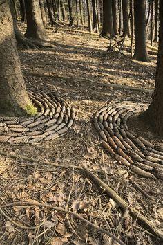 """""""Lasst die Sonne in den Wald"""" trockene Fichtenzweige und Löwenzahnblüten ca. 4 m Durchmesser ein Zeichen als Mahnung gegen Fichtenmonokulturen, in denen sich selbst das Moos am Waldboden schwer tut zu wachsen April 2017"""