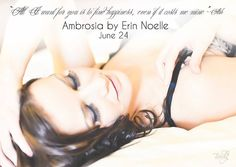 The Book Boyfriend Series by Erin Noelle