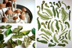 andies-specialty-sweets-sugar-candy-leaves-ferns-mushrooms-etsy