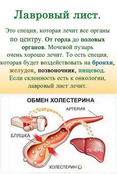 (49) Одноклассники ЛАВРОВЫЙ ЛИСТ В ПОМОЩЬ
