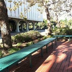 "@shibznailia's photo: ""Its already a warm day here at SDSU #SDSU #sandiegostate #early #school #class #hot"""