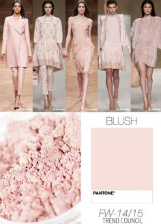TREND COUNCIL FALL/WINTER 2014- BLUSH