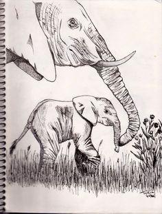 Elephant drawing wow!