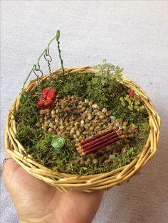 #minigarden #fairygarden #minikert  #miniature