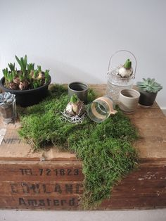 Urban Jungle Bloggers: Creative Plant Pots by @anneke66