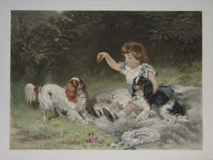 [Child with biscuit & two King Charles Spaniels.]