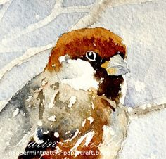 Karin @ Peppermint Patty's Papercraft Sunday Watercolors - House Sparrow