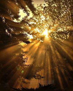 Sunrise Sunset Photography goldGifts under by VanillaExtinction, $20.00
