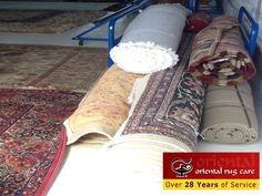 Need Professional Rug Cleaning Service in Florida