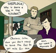 """Because Sherlock would solve the milk problem that way and then name the cow """"Mycroft II."""" HAHA"""