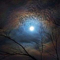 Multihued halos surround the nearly full moon over Borrego Springs, California, in a newly released picture of a lunar corona. Types Of Renewable Energy, Borrego Springs, Perfect World, Heaven On Earth, Stars And Moon, Full Moon, Night Skies, Great Photos, Moonlight