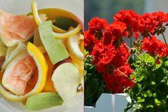 Bitkileri Coşturan 8 Doğal Yöntem ve Ev Yapımı Tarif - Yemek.com Cabbage, Mexican, Vegetables, Ethnic Recipes, Flowers, Food, Gardening, Vegetable Recipes, Florals