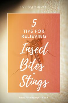 Natural ways to prevent and relieve bug bites. From DIY repellant to anti-itch remedies, these tips will help you out when it comes to mosquitos, spiders and bedbugs. Home Exercise Program, At Home Workout Plan, At Home Workouts, Health And Beauty Tips, Health Tips, Bites And Stings, Detox Diet Drinks, Anti Itch Cream, Spider Bites