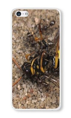 Cunghe Art Custom Designed Transparent PC Hard Phone Cover Case For iPhone 5C With Wasp Ant Insect Phone Case https://www.amazon.com/Cunghe-Art-Custom-Designed-Transparent/dp/B0169ZU4JQ/ref=sr_1_1319?s=wireless&srs=13614167011&ie=UTF8&qid=1467252948&sr=1-1319&keywords=iphone+5c https://www.amazon.com/s/ref=sr_pg_55?srs=13614167011&rh=n%3A2335752011%2Cn%3A%212335753011%2Cn%3A2407760011%2Ck%3Aiphone+5c&page=55&keywords=iphone+5c&ie=UTF8&qid=1467252069&lo=none