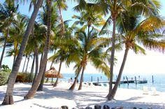 The stunning Amara Cay Resort beach in beautiful Ilsamorada, Florda Keys. Read and see more: www.wanderdipity.com