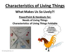 What are the needs and characteristics of living things? Find out with this short and fun introductory lesson. Students learn about the four things needed for life - water, food, shelter, and homeostasis.