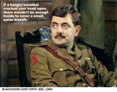 Blackadder | If a hungry cannibal cracked open your head, there wouldn't be enough to cover a small water biscuit.