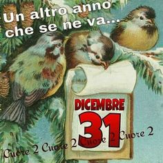 31 dicembre Happy New Year Wishes, Baseball Cards, Day, Braids, Chair, Quotes, Christmas, Happy New Years Eve, Event Posters
