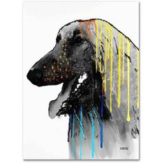 Marlene Watson Afghan Hound Canvas Art, Size: 18 x 24, Multicolor