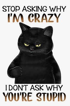 I Love Cats, Crazy Cats, Cute Cats, Funny Cats, Funny Animals, Haha Funny, Funny Jokes, Hilarious, Cat Quotes