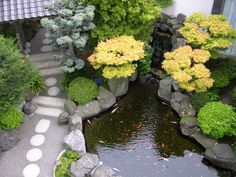 Oosterse tuin met alle drie de kernelementen prominent in beeld: water, stenen en planten.