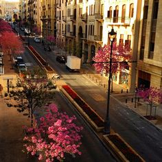 Beirut in Pink, Lebanon Baalbek Lebanon, Beirut Lebanon, Beautiful Streets, Beautiful Places, Countries To Visit, Romantic Places, Architecture, Travel Around The World, Middle East