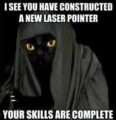Funny Darth Meow Meme for Star Wars Day