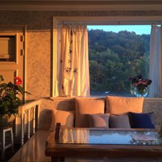 I can imagine myself on the couch looking out at the beautiful view
