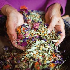 Herbal Antibiotics: An Effective Defense Against Drug-Resistant 'Superbugs' - From MOTHER EARTH NEWS magazine.