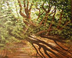Shadows-Hebrews 10:1 depicts the beauty of light shining through a thick forest and cassting crisp shadows.  Painting is accompanied by a devotional.  See details on website.